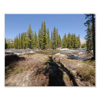 3971 Photograph of Yosemite National Park 6 14