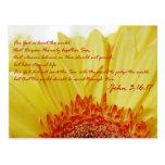 3:16 de Juan en primavera Tarjetas Postales
