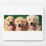 3 amigos mouse pad