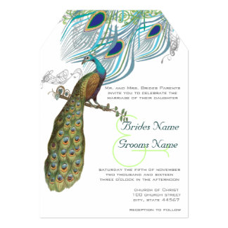 3 Aqua Peacock Vintage Feathers & Bird 5x7 Paper Invitation Card