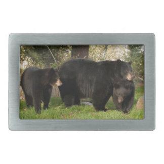 3 Black Bears Rectangular Belt Buckles