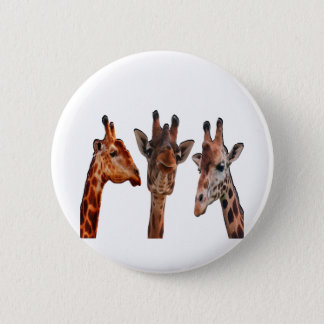 3 by 3 pinback button