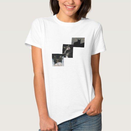 3 Cat T-shirt