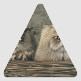 3 Cats and a Owl in a Basket Triangle Sticker