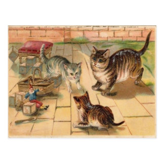 3 Cats Playing With Toys Vintage 1900's Postcard