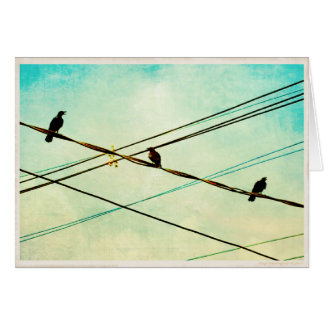 3 Cawing Crows on a Wire Blank Greeting Card