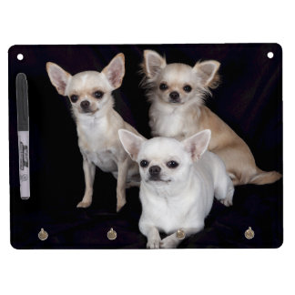 3 chihuahuas dry erase board with keychain holder