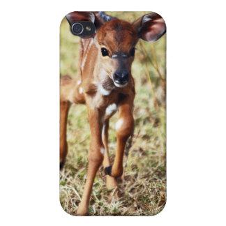 3 ciervos viejos del Nyala del bebé del día iPhone 4/4S Carcasa