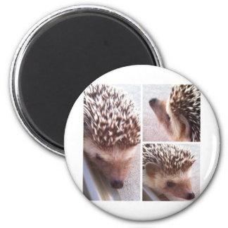 3 Close-ups, Spike 2 Inch Round Magnet