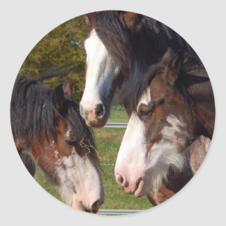 3 Clydesdale heads Classic Round Sticker