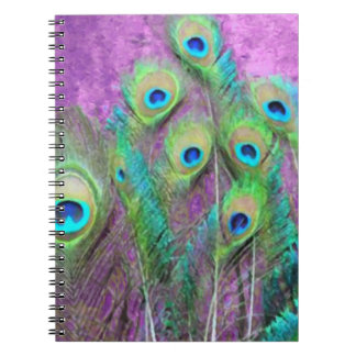 3 Color Choices  - Peacock Feathers Notebook