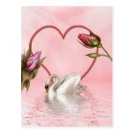 3 color de rosa elegantes postales