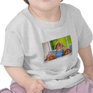3 conejitos camisetas