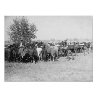 3 Cowboys Roping Horses PhotographSouth Dakota Poster