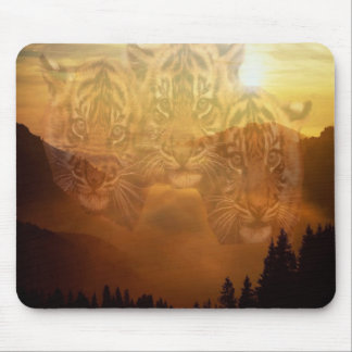 3 cubs mouse pad