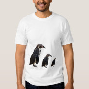 3 Cute Black and White Humboldt Penguin T Shirt at Zazzle