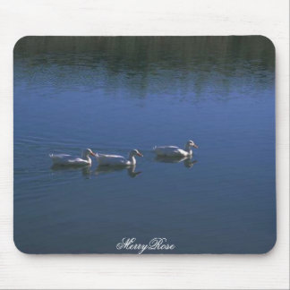 3 Cute Ducks In Water Mouse Pad