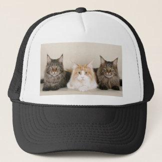 3 Cute Kittens Trucker Hat