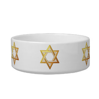 """3-D"" Golden Star of David Bowl"
