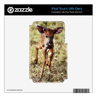 3 day old baby Nyala deer Decal For iPod Touch 4G