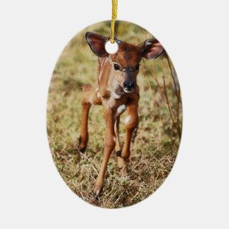 3 day old baby Nyala deer Christmas Ornament