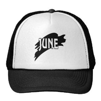 3 de junio gorras de camionero