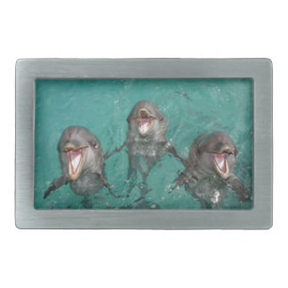 3 delfínes hebilla cinturon rectangular
