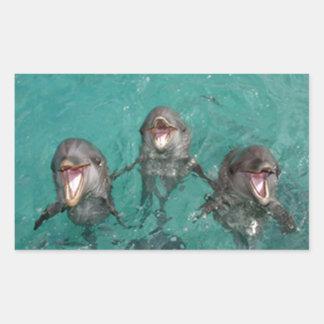3 Dolphins Rectangular Sticker