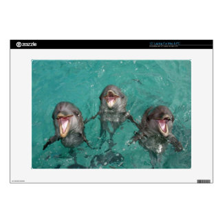 "3 Dolphins 15"" Laptop Skin"