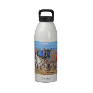 3 Donkeys Reusable Water Bottles