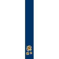 3 Earth Day Turtles World Map On Shell Necktie tie