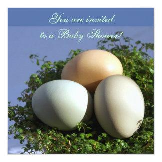 3 Eggs 5.25x5.25 Square Paper Invitation Card