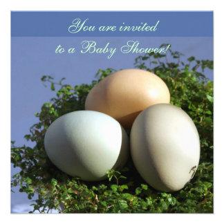 3 Eggs Custom Announcement