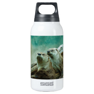 3 funny otters in a beautiful background of color insulated water bottle