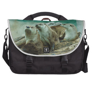 3 funny otters in a beautiful background of color computer bag