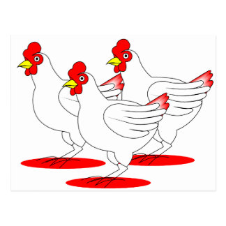 3 gallinas francesas tarjeta postal