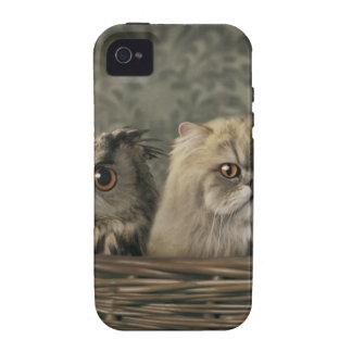 3 gatos y un búho en una cesta iPhone 4 carcasa