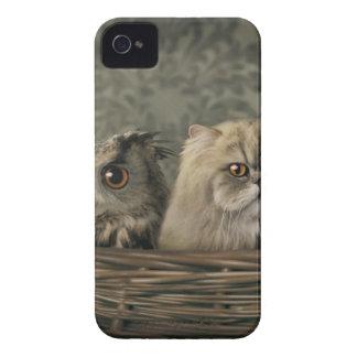 3 gatos y un búho en una cesta iPhone 4 Case-Mate cárcasas