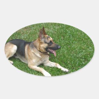 3 german-shepherd-laying.png oval sticker