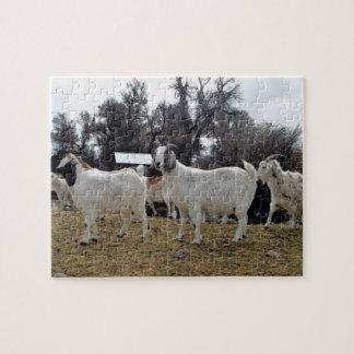 3 Goats Jigsaw Puzzle