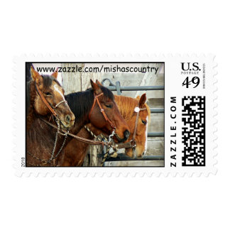 3 Horse Heads Postage Stamp