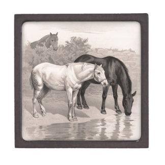 3 Horses, B&W Premium Keepsake Box