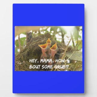 3 Hungry Baby Birds In Nest Plaque