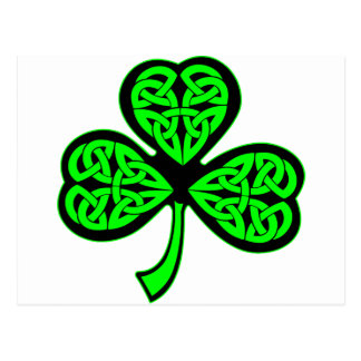3 Leaf Celtic Clover Shamrock Postcard