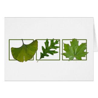 3 leaves greeting card