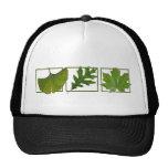 3 leaves trucker hats