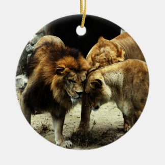 3 leones que empujan sus cabezas juntas adorno navideño redondo de cerámica