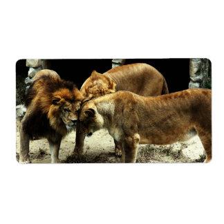 3 leones que empujan sus cabezas juntas etiquetas de envío