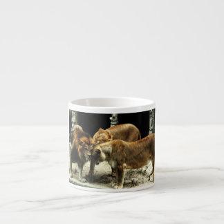 3 leones que empujan sus cabezas juntas taza espresso
