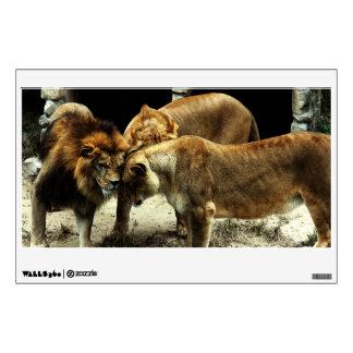 3 leones que empujan sus cabezas juntas vinilo adhesivo